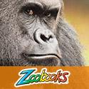 125x125 Zoobooks Home Page