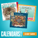 2008 calendars & gifts