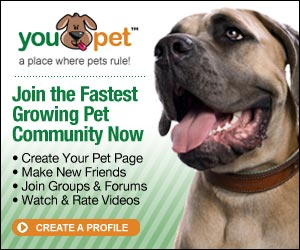You Pet - Pet Community