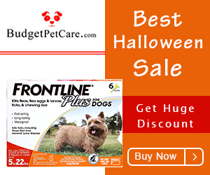 Halloween Spooky Sale: Extra 6% Off + Free Shipping