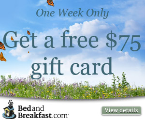 Get a free $50 gift card with purchase!