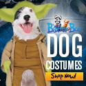 Shop All Dog Costumes At BaxterBoo.com!