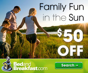 Save $50 on Family Fun