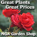 Shop for grown plants!