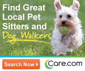 Dog walking and pet sitting jobs in  Greater  Boston  October 28th