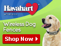 Havahart Wireless Dog Fences is a great gift for a dog lover!