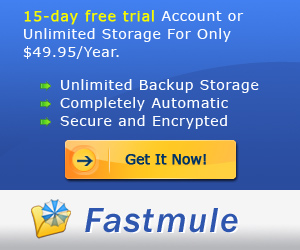 Fastmule Protect Your Business, Never Worry about Y