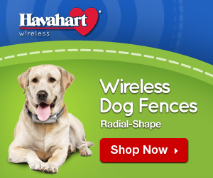 Havahart Wireless Radial Shaped Wireless Dog Fence