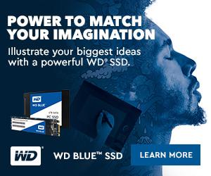 WD Blue SSD 300x250