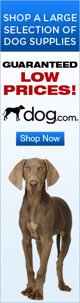 Dog.com Monthly Special