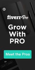 120x240 Fiverr Pro