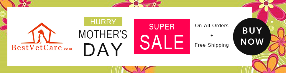 Get 12% Extra OFF + Free Shipping on Everything This Mother's Day. Use Coupon: BESTMUM