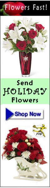 Send Holiday Flowers and Plants - Flowers Fast Online Florist