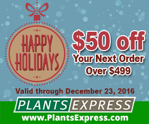 Happy Holidays from Plants Express