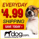 4.99 Flat Shipping at dog.com
