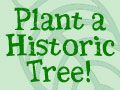 Give A Gift To The Earth, Plant A Historic Tree