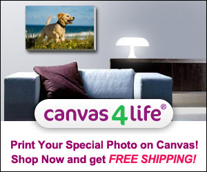 Canvas4Life Coupon: Free shipping