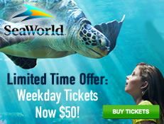 SeaWorld Orlando Amazing Deal on Weekdays - Tickets only $50!