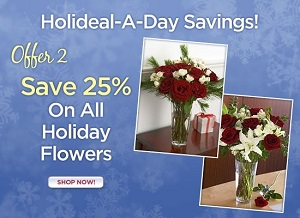 Save 25% Site Wide On Eco-Elegant Flowers for the Holidays from OrganicBouquet.com! Use Code: AF25OF