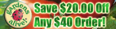 Save $20 on any order of $40 or more!