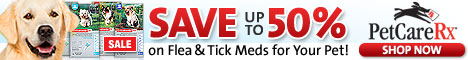 Save Up To 50% on Flea & Tick Meds for Your Pet!