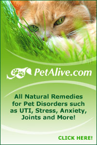 Learn about PetAlive natural remedies for pets!