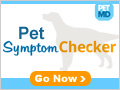 pet symptom checker