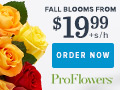 Fall Flowers & Gifts from only $19.99 at ProFlowers