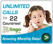 Lingo VOIP Banner