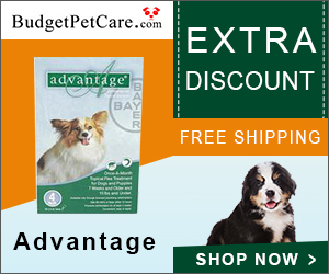 Advantage Flea Treatment For Dogs Now @ 5% Extra Discount & Free Shipping