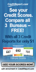 120x240 - Check Credit Score Online