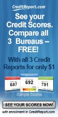 120x240 - Check Credit Score Online