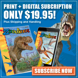 Print & Digital Subscriptions Only $19.95