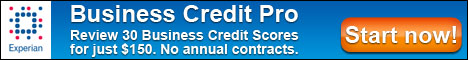 Review 100 Business Credit Scores for $150