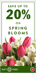 Save Up To 20% On Our Spring Blooms