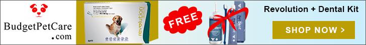Get Pet Dent Dental Kit Worth $20 Free with Revolution @ BudgetPetCare.com