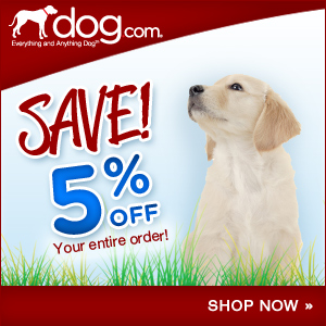 Low Everyday Shipping at Dog.com