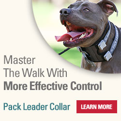 Master the Walk with your dog with the Pack Leader Collar