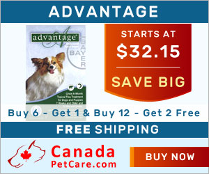 Image for Buy Online Advantage Flea For Dog