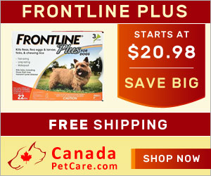 Buy Cheap Frontline Plus For Dogs