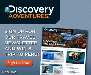 Discovery Adventures Newsletter
