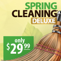 Spring Cleaning 11 Deluxe
