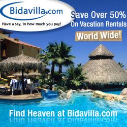 More properties world wide- BidAvilla