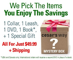 At Cesar's Way We pick the Items You Enjoy The Savings. Mystery Box Includes 1 Collar, 1 Leash, 1DVD, 1 Book + 1 Special Gift all for $49.99 plus shipping.