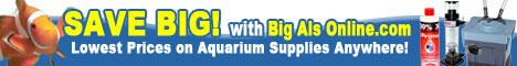 Save with BigAlsOnline.com