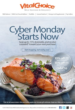 Cyber Monday Sale – Save 15% Off Your Purchase Of $225