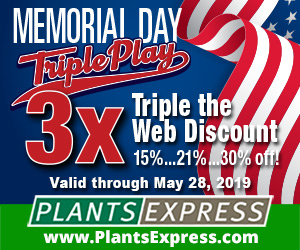 Memorial Day Triple Play -- Triple Your Internet Discount with Plants Express!
