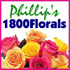 Go to 800florals.com now