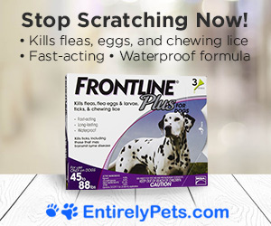 Frontline Plus On Sale Now!