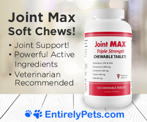 Joint Max-Veterinarian Recommended Joint Supplement for Pets